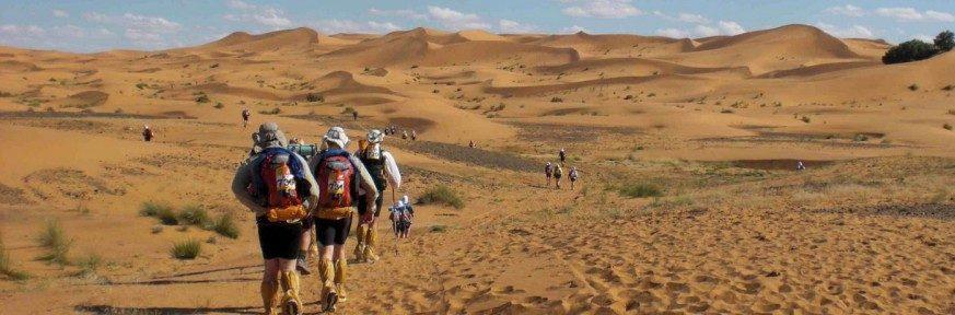 Sahara Oct 2013